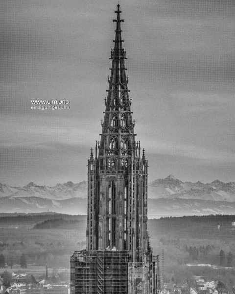 Münsterturm - die Alpen im Hintergrund