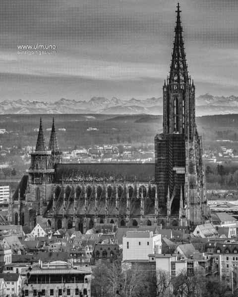 Das Münster und die Alpen - Ulmer Alpenblick